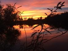 Fishing pond southwest arizona